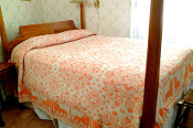 Tyler Lion Coverlet in Salmon/Bone